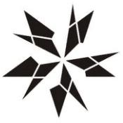 天星技术团队