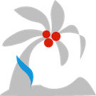 CiCi岛