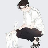 城南少年与猫